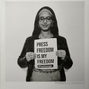 defend.wikileaks.org, press freedom